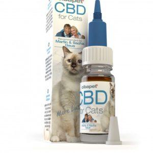 2% CBD Oil For Cats