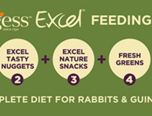 THE BENEFITS OF BURGESS EXCEL PRODUCTS